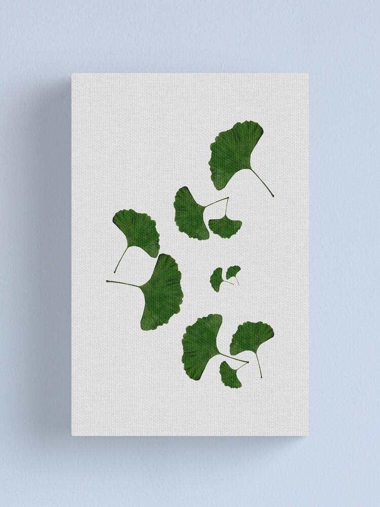 Alternate view of Ginkgo Leaf I Canvas Print