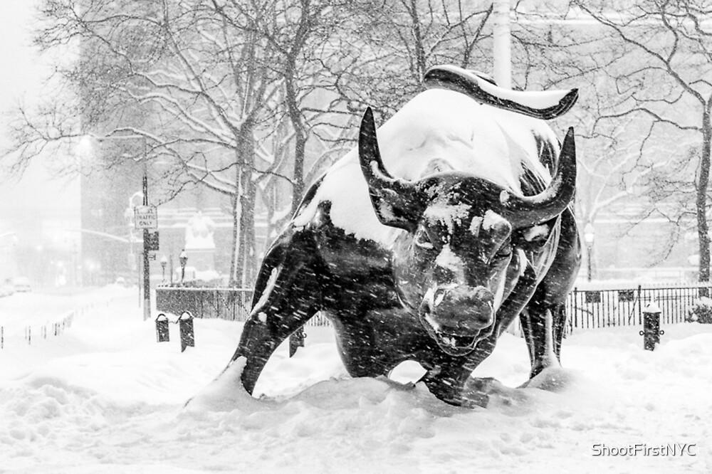 «The Wall Street Bull, NYC (en la nieve)» de Sean Sweeney