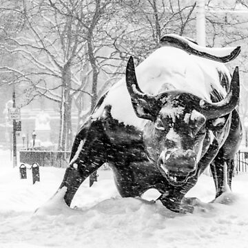The Wall Street Bull, NYC (en la nieve) de ShootFirstNYC