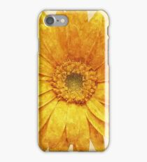 Beautiful blossom on canvas iPhone Case/Skin
