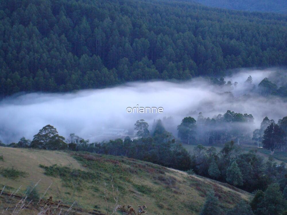Morning Mist by orianne