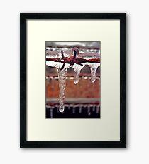 barbed ice Framed Print