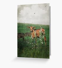 Little Brown Cow Amongst Flowers Greeting Card