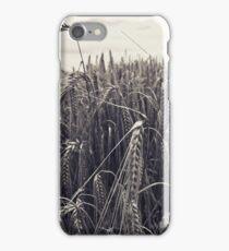 Corn field iPhone Case/Skin