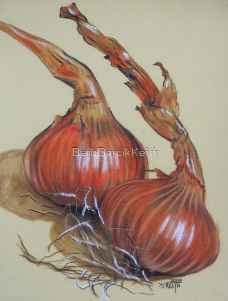 Spanish Onions by BarbBarcikKeith