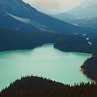 Peyto Lake by Alla Gill
