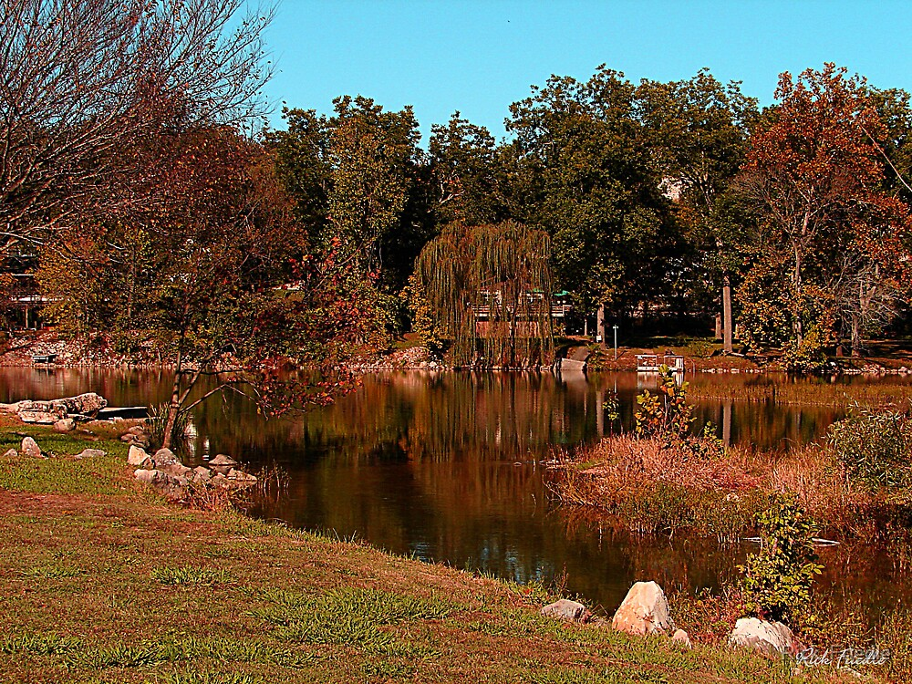 Autumn Day by Rick  Friedle