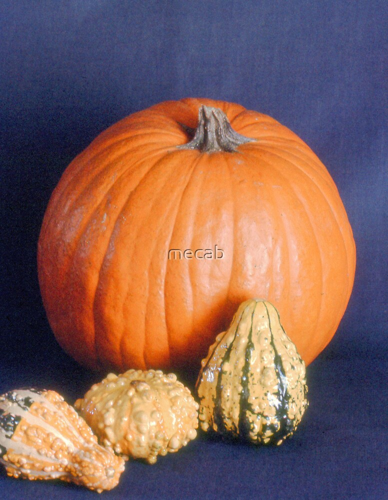 Gourds by mecab