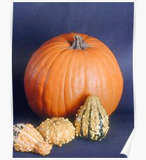 Gourds Poster