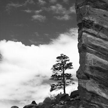 Alone On The Rock by lemontree