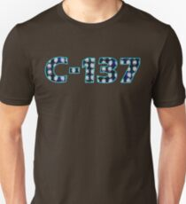 C-137 Galaxy Rick Sanchez Faces Rick and Morty Dimension C137 C 137  T-Shirt