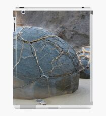 Breaking Up iPad Case/Skin