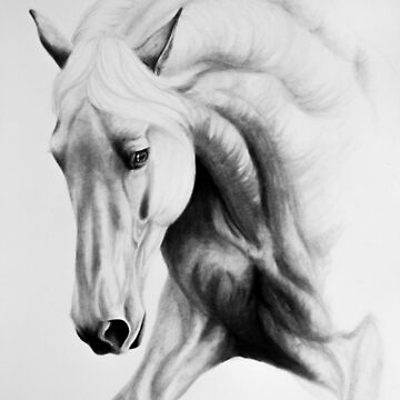 """Fading Beauty"" - Spanish Stallion portrait by earth2sd"