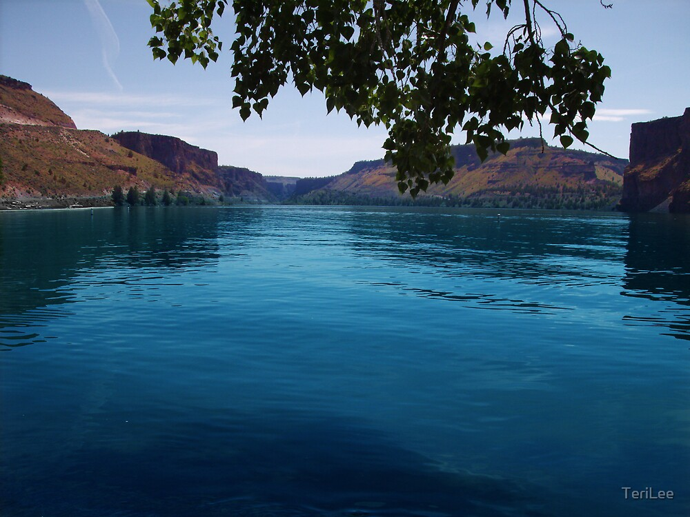 Lake Billy Chinook  by TeriLee