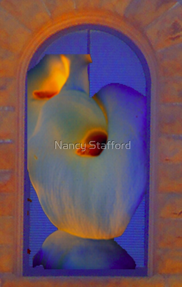 Looking in the window by Nancy Stafford