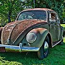Rusted Volkswagen Beetle by Ferenghi