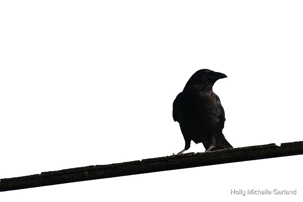 Crow by Holly Michelle Garland