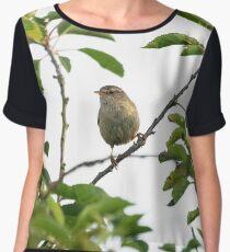 Wren Songbird Bird on a Branch (Troglodytes) Chiffon Top