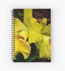 Yellow Orchid , Spiral Notebook