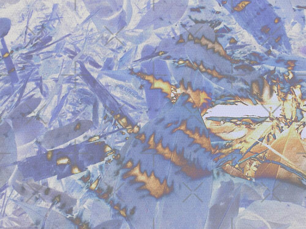 Fire & Ice by Rebekah  McLeod