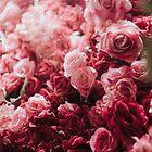 coming up roses by sleepwalker