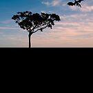 Dragon Silhouette (The Unseen III) von JaneMYoung