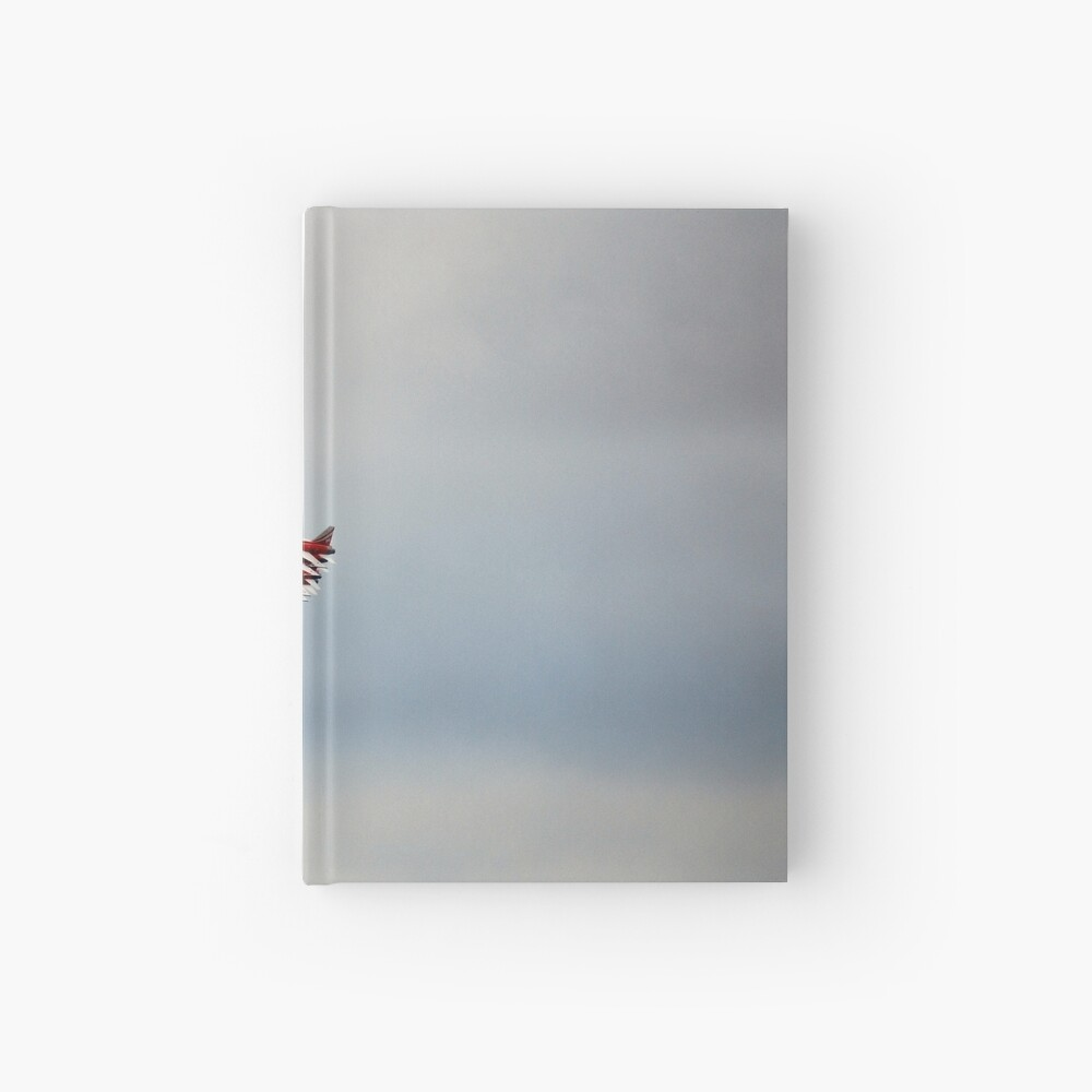 SWISS AIR FORCE PATROUILLE SUISSE Hardcover Journal