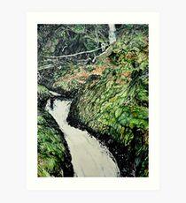 Cader Idris Art Print