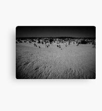 A Desolate View Canvas Print
