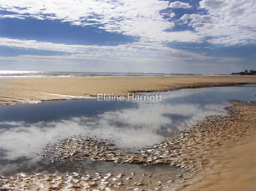 Kirra Beach by Elaine Harriott
