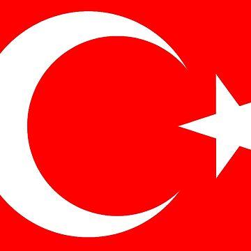 TURKEY, FLAG, TURKISH, Flag of Turkey, Turkish Flag, Crescent Moon, Star, Pure & Simple by TOMSREDBUBBLE
