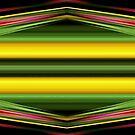 Stripes and Zig Zags by Dana Roper