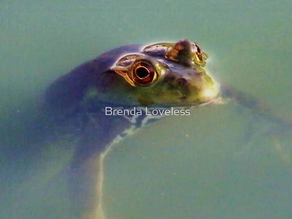 frog eyes by Brenda Loveless