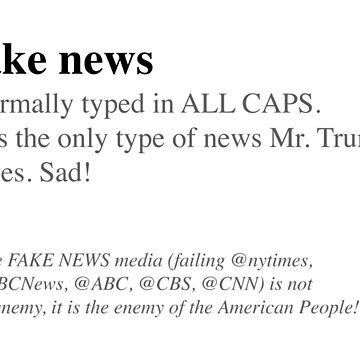 Fake News by b3rge