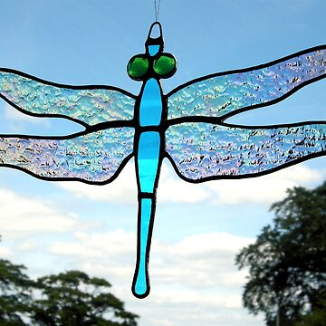 Dragonfly (Iridescent Wings) 1 by neilsglass