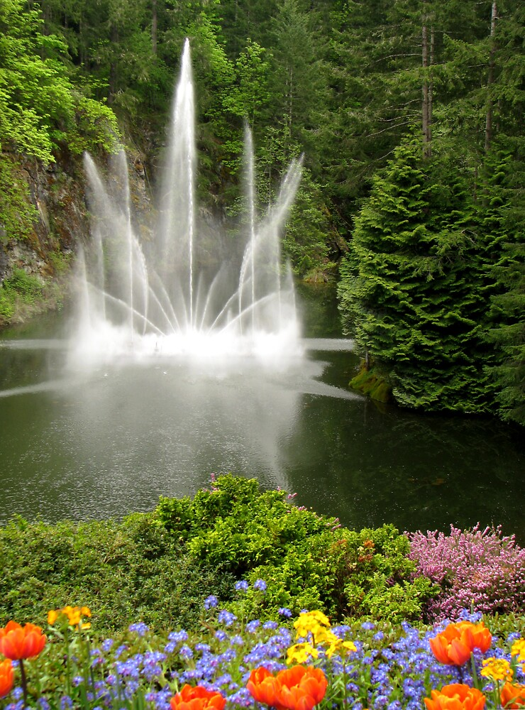 Ross Fountain by Rebecca Cruz