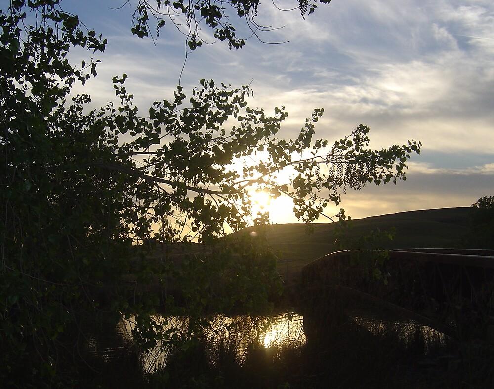 Bridge to evening by Jerry Stewart