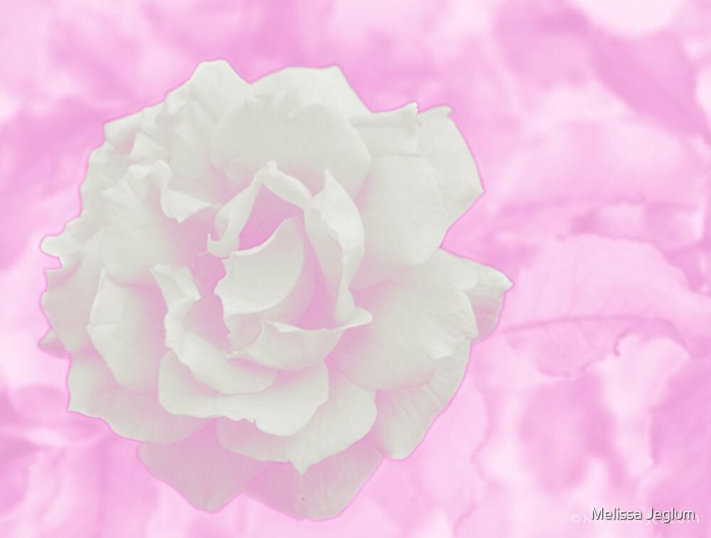Bloom by Melissa Jeglum