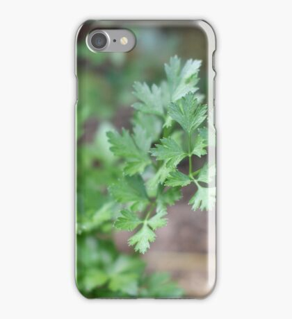Parsley iPhone Case/Skin