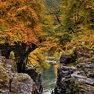 Autumn has arrived by FLYINGSCOTSMAN