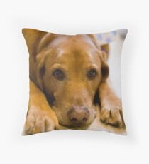 Copper's Gift Face On Throw Pillow