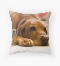 Copper's Gift Low Throw Pillow