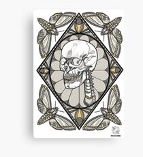 Moth Mandala II Canvas Print