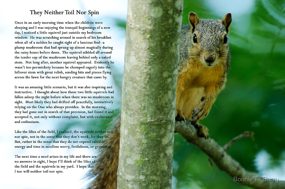 They neither toil nor spin . . . by Bonnie T.  Barry