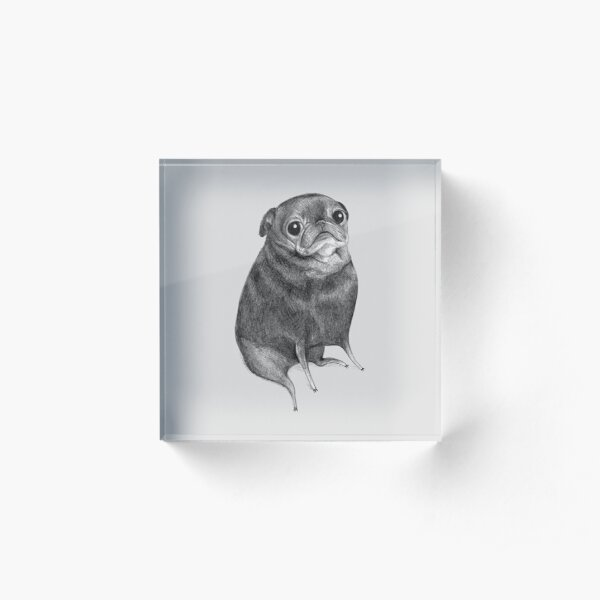 Sweet Black Pug Acrylic Block