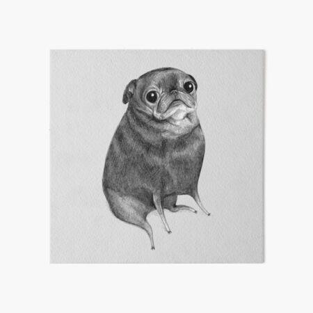 Sweet Black Pug Art Board Print
