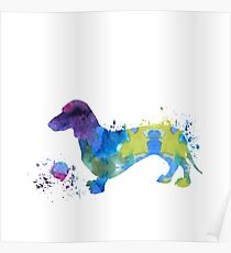 Water color dachshund art Poster
