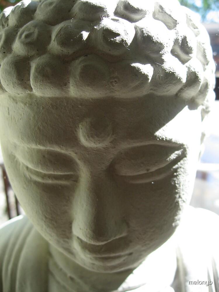 Everyday Life Series: Studio Buddha 4 by melonyb
