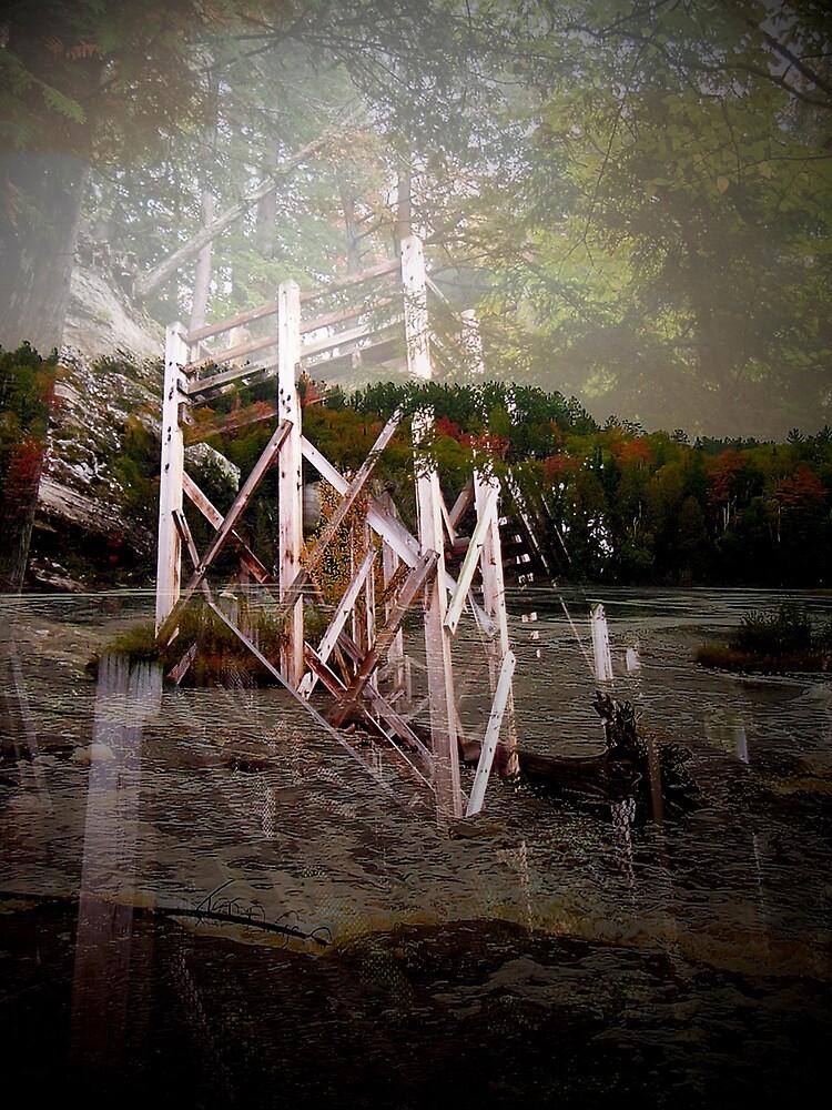 Experiment by Erika Benoit