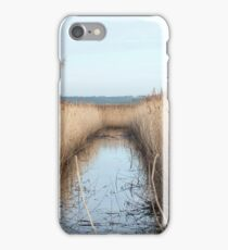 Reed Bed in Countryside iPhone Case/Skin